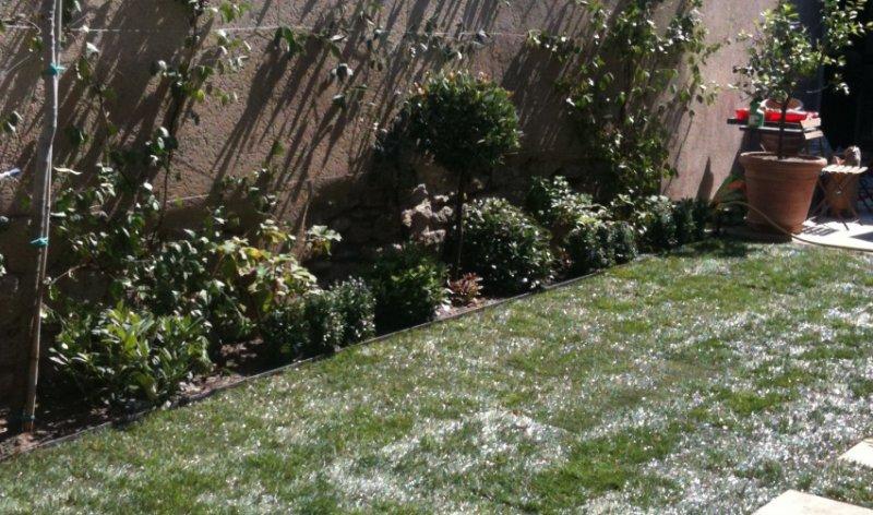 Ecojardin un jardinet mi ombre mi soleil - Jardiniere mi ombre mi soleil ...